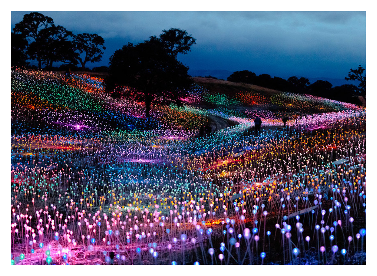 Paso Glows with 60,000-Bulb