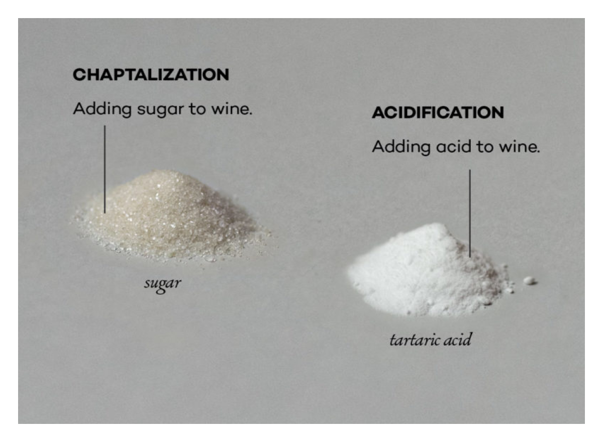 Chaptalization and Acidification